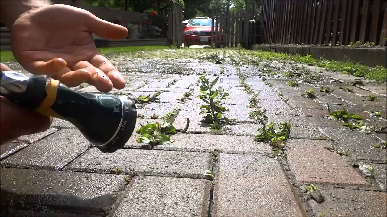 7 Benefits of Blasting Weeds and Moss from Driveway
